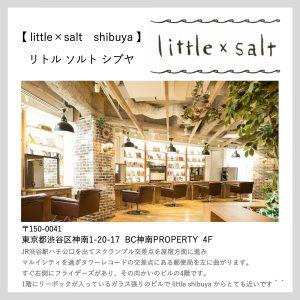 littlesalt店舗のご案内
