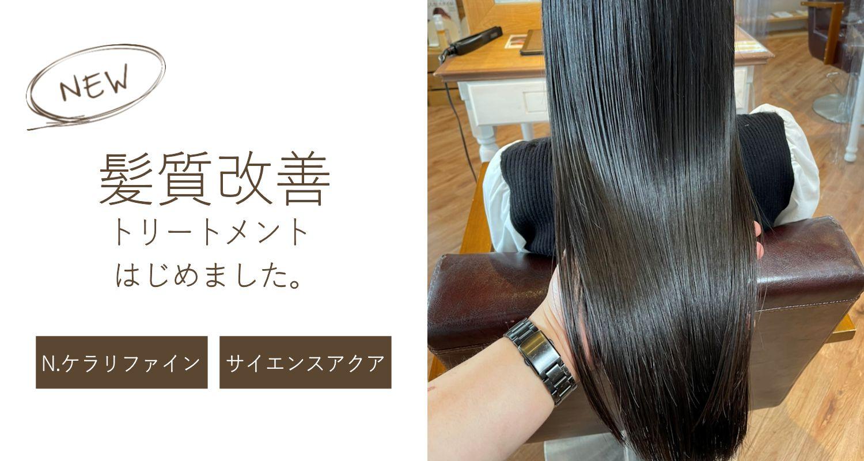 渋谷・新宿・横浜から発信 有名モデルも通う美容室グループ「little(リトル)イメージカット05